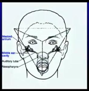 Tetaedro_como_piramide
